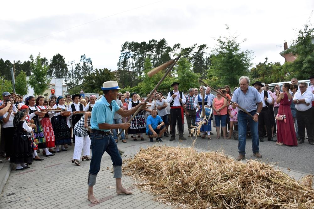 ROTA DAS COLHEITAS - Loureira «reaviva memórias» e ensina aos mais novos a tradição da Malhada do Feijão