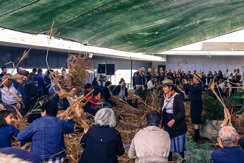 VILA VERDE - Desfolhada minhota para recordar tradição este sábado em Soutelo