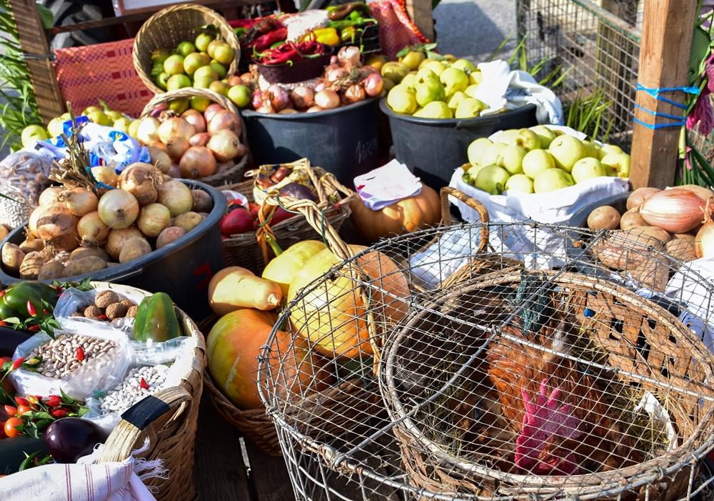 VILA VERDE - Arranca esta quarta-feira a Festa das Colheitas de Vila Verde – XXVIII Feira Mostra dos Produtos Regionais