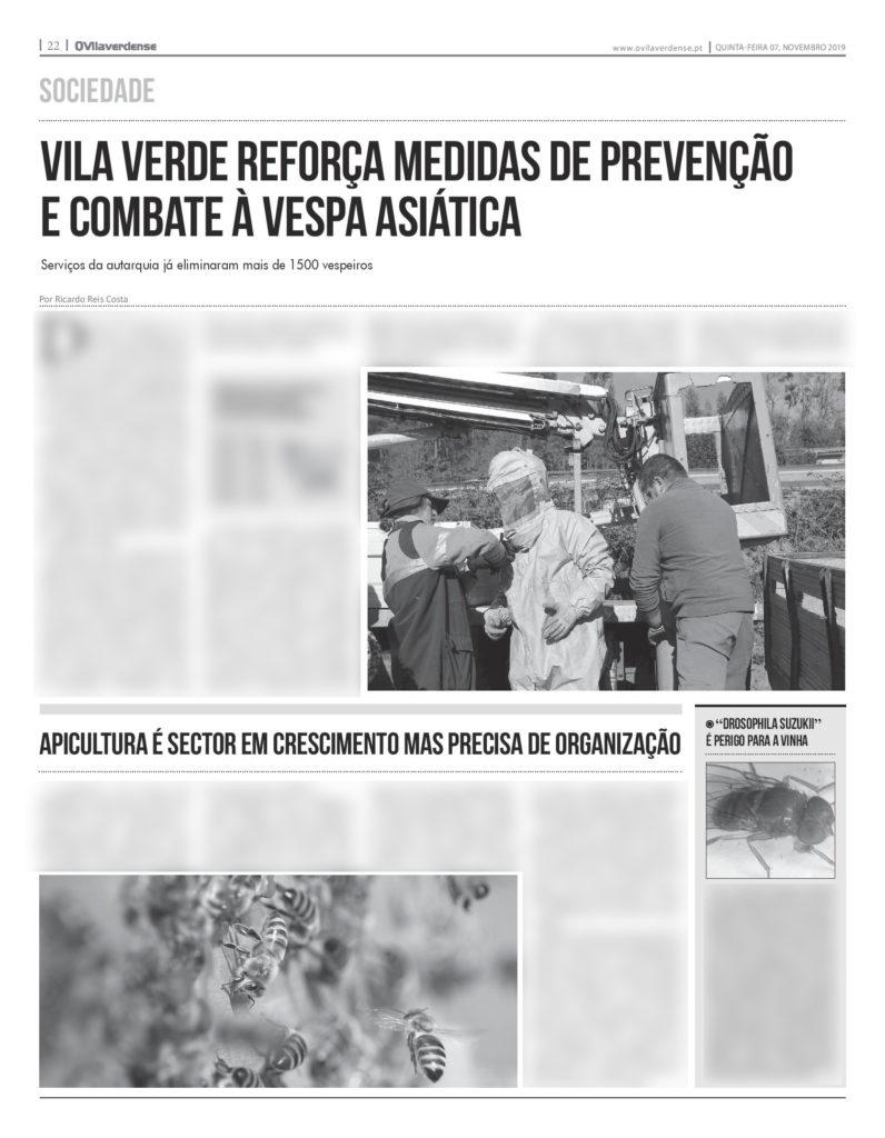EDIÇÃO IMPRESSA – Vila Verde reforça medidas de combate à vespa asiática