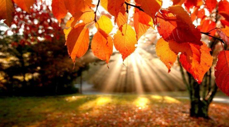 METEOROLOGIA – Sol volta na segunda-feira mas traz o frio