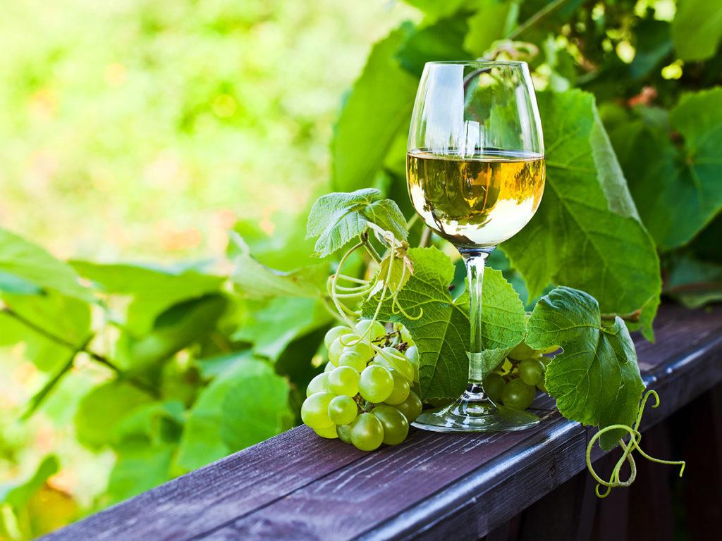 """NACIONAL - Acordo UE-China protege Vinho Verde de """"imitações"""""""
