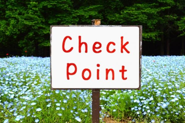 チェックポイントと花畑
