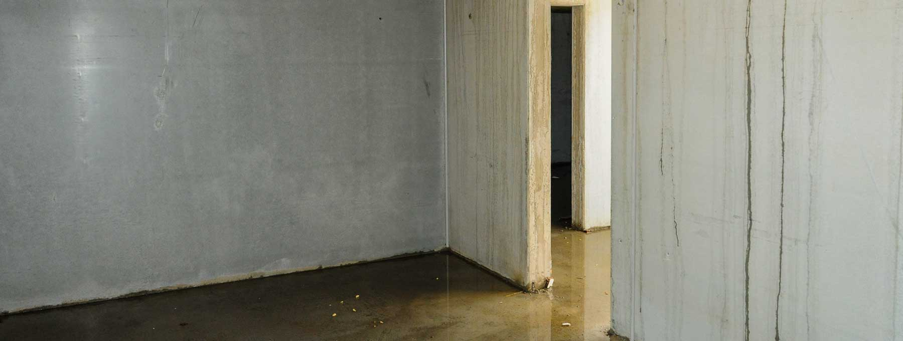 basement flood damage raleigh nc