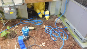 clogged-sewage-line