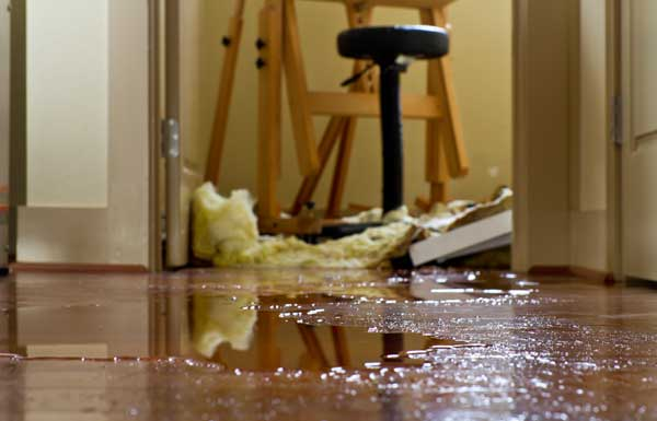water damage holly springs nc