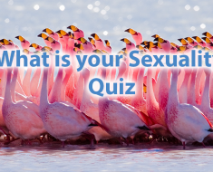 A Quiz For Girls - What Is Your Sexuality? 5