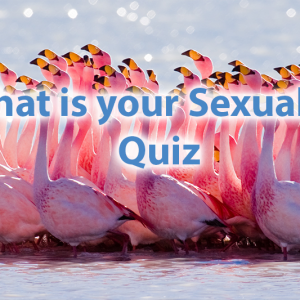 A Quiz For Girls - What Is Your Sexuality? 44