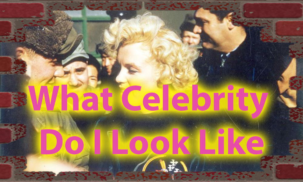 What celebrity do i look like quiz - Celebrity MatchMaker 7