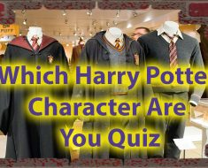 Which Character Are You From Harry Potter Quiz Only for Potterheads 2