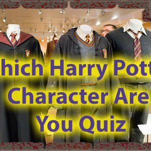 Which Character Are You From Harry Potter Quiz Only for Potterheads 47