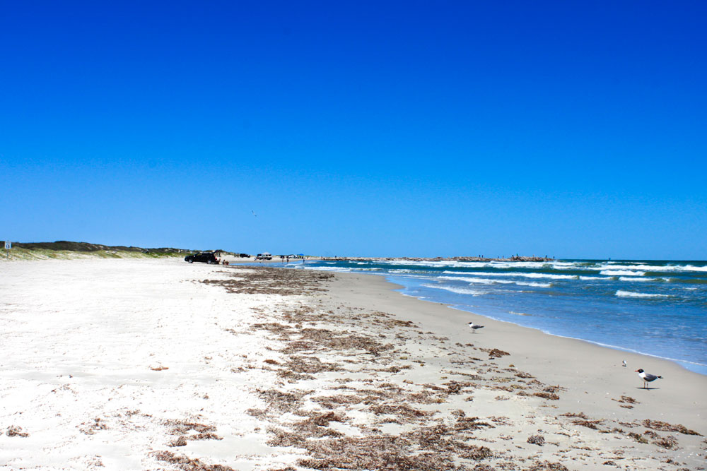77853cfc mustang island state park