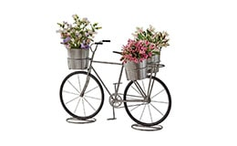 Maceta bicicleta metálica dos colores Member's Mark