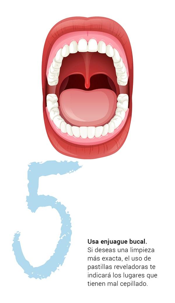¿Sabes cómo cuidar tus dientes?