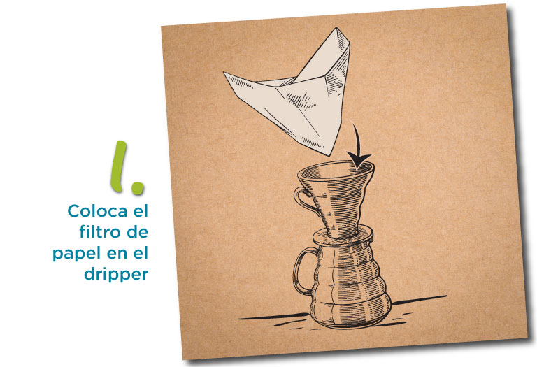 1. Coloca el filtro de papel en el dripper