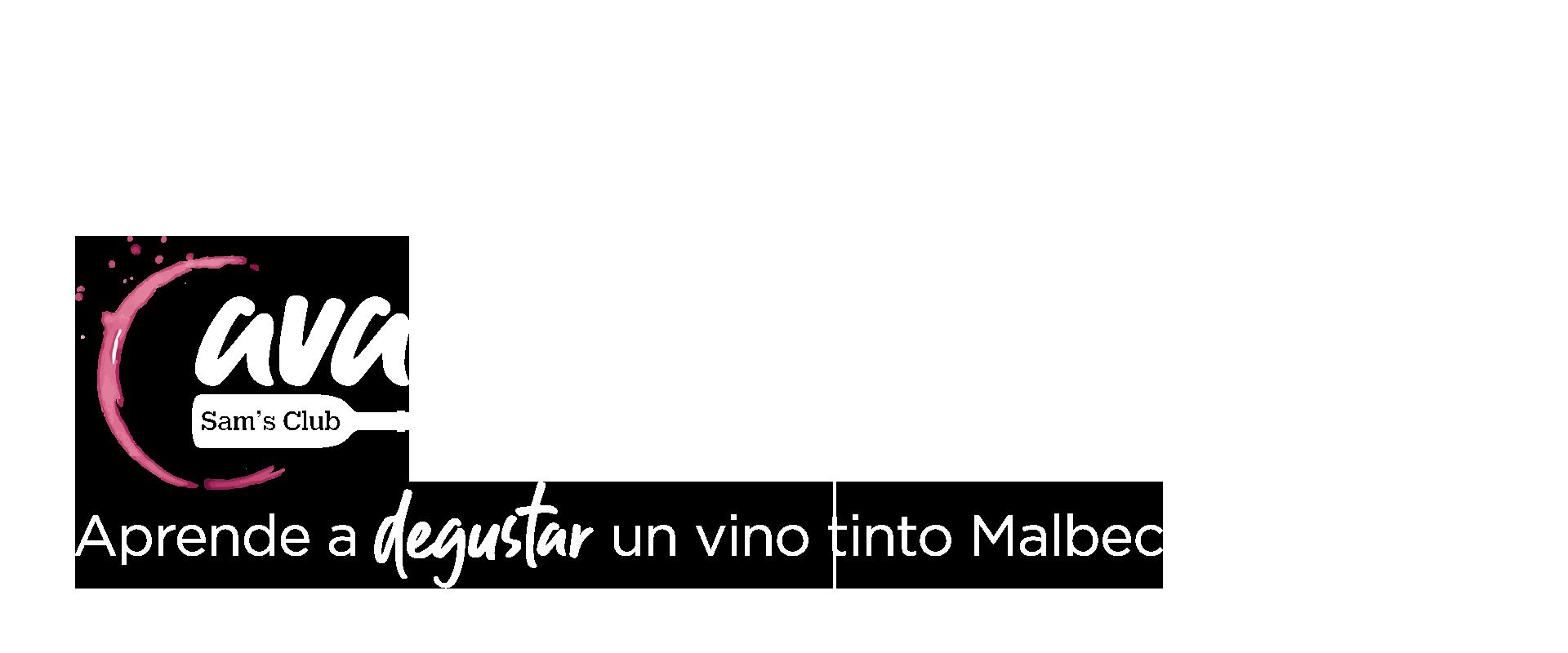 Aprende a degustar un vino tinto Malbec