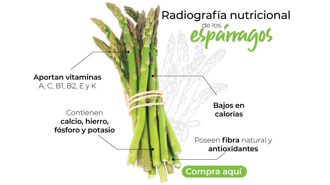 Radiografía nutricional de los espárragos -Aportan vitaminas A, C, B1, B2, E y K -Contienen calcio, hierro, fósforo y potasio -Poseen fibra natural y antioxidantes -Bajos en calorías