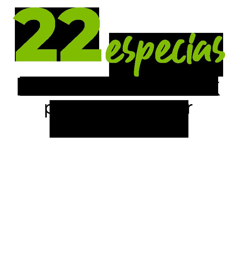 22 especias Member's Mark para darle sabor a tus platillos