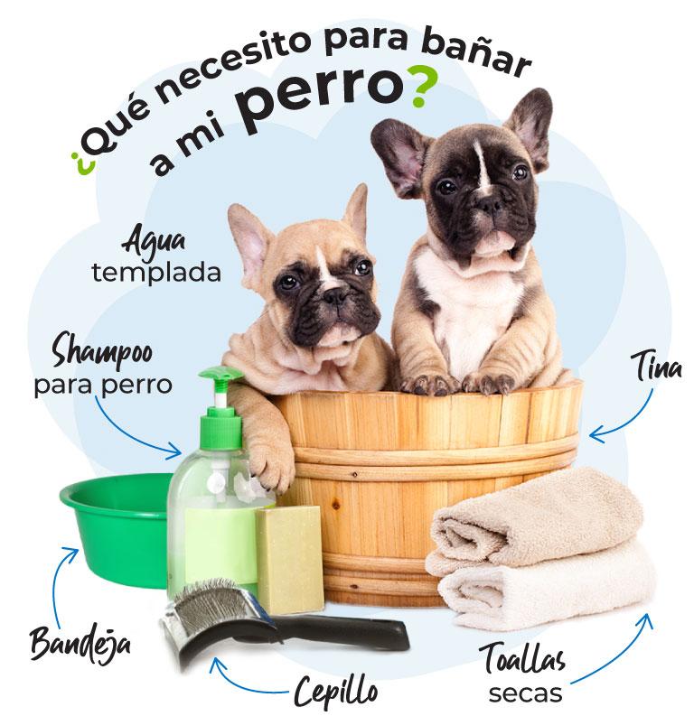 ¿Qué necesito para bañar a mi perro?  Agua templada, shampoo para perro, tina, bandeja, cepillo, toallas secas.