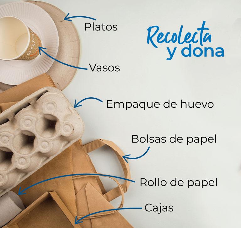 Recicla y dona, platos, vasos, empaques de huevo, bolsas de papel, rollo de papel, cajas