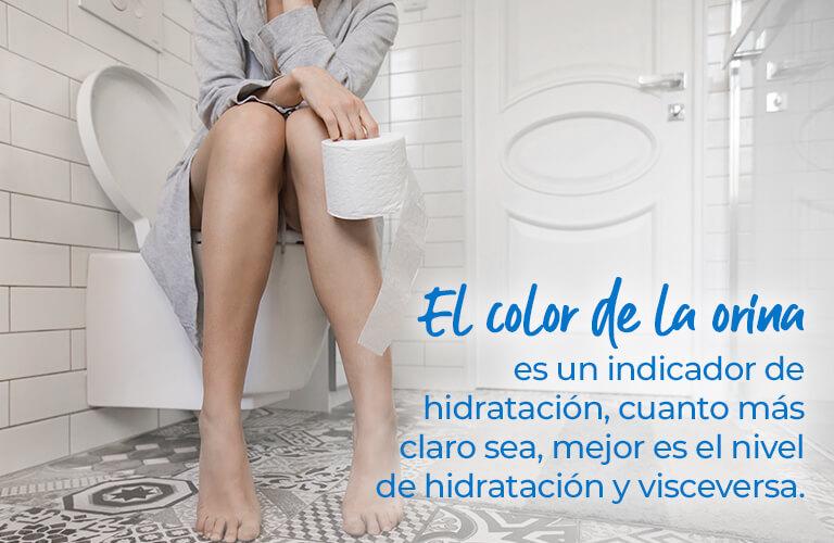 El color de la orina es un indicador de hidratación, cuanto más claro sea, mejor es el nivel de hidratación y visceversa.