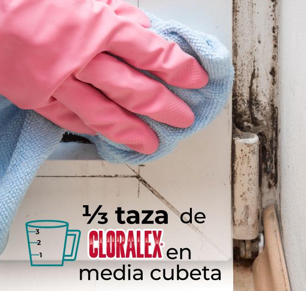 1/3 taza de Cloralex en media cubeta de agua