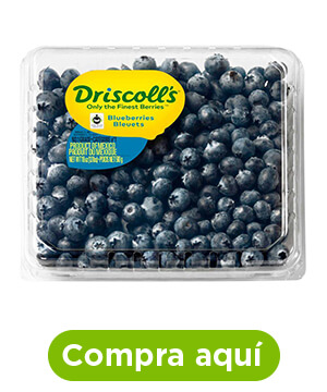 Blueberries, 510 g, Driscoll's