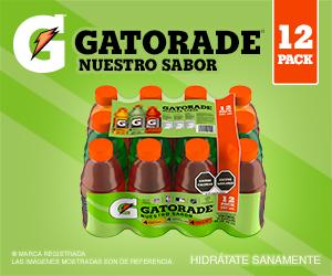 Gepp Gatorade - Boxbanner - Te recomendamos - Gatorade Nuestro Sabor