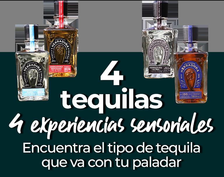 4 tequilas, 4 experiencias sensoriales Encuentra el tipo de tequila que va con tu paladar
