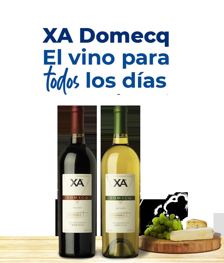 XA Domecq El vino para todos los días