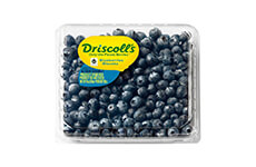Blueberries, 510 g, Driscoll's
