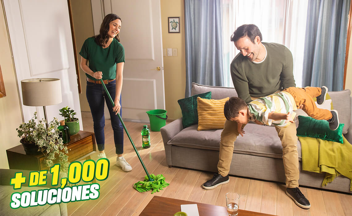 Más de 1000 soluciones de limpieza