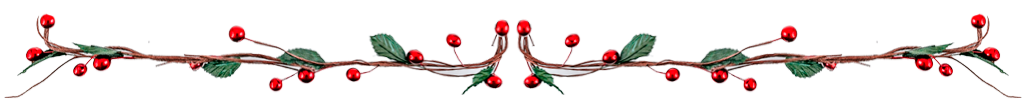 297C053B Margen Navidad
