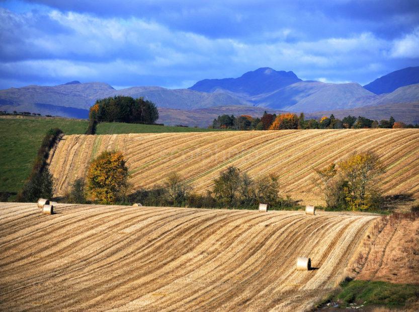 Rolling Fields Trossachs