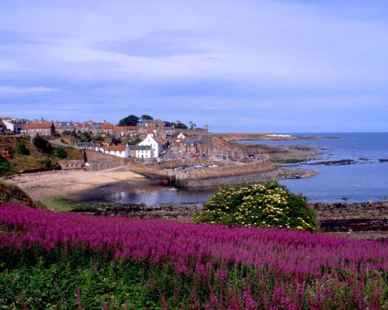 Summer View Towards Crail Harbour East Neuk Of Fife