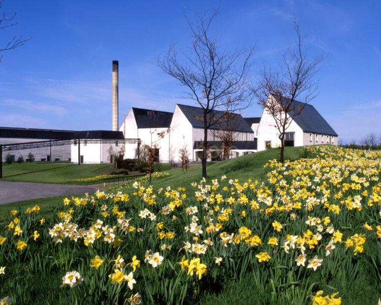 Springtime View Of Auchroisk Distillery Nr Boat O Brig River Spey Moray