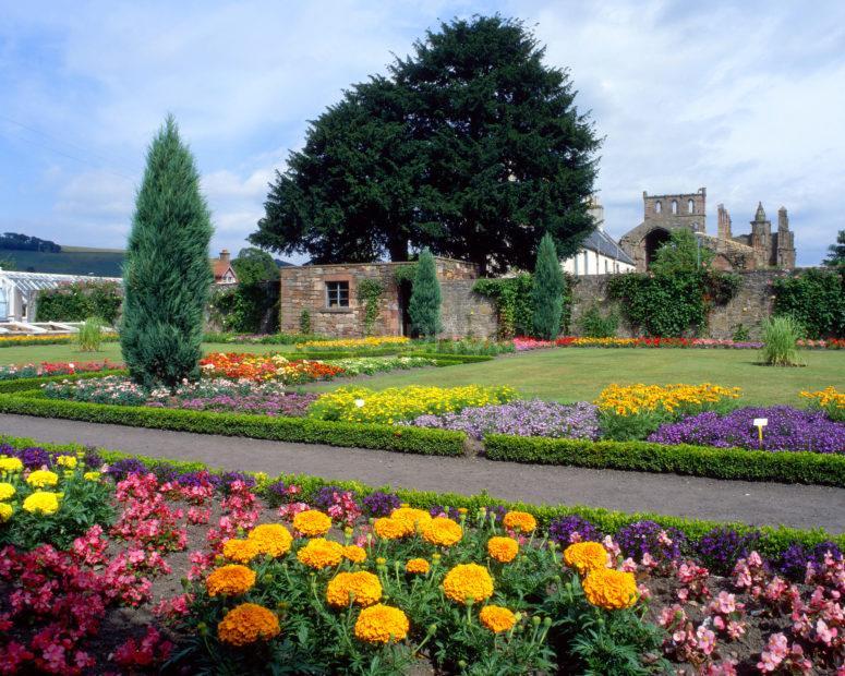 Melrose Abbey From Abbey Garden Scottish Borders