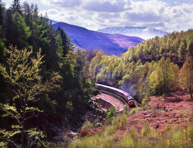 Royal Scotsman In Monessie Gorge