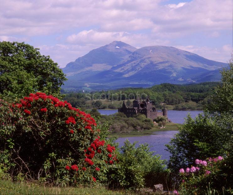 Spring View Towards Kilchurn Castle And Ben Lui Loch Awe Argyll