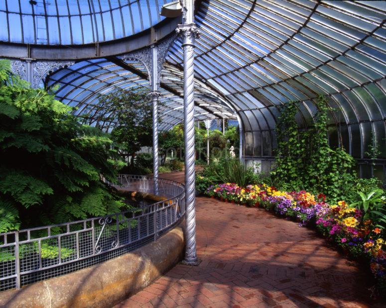Inside The Kibble Palace Glasgow Botanical Gardens West Side Of Glasgow
