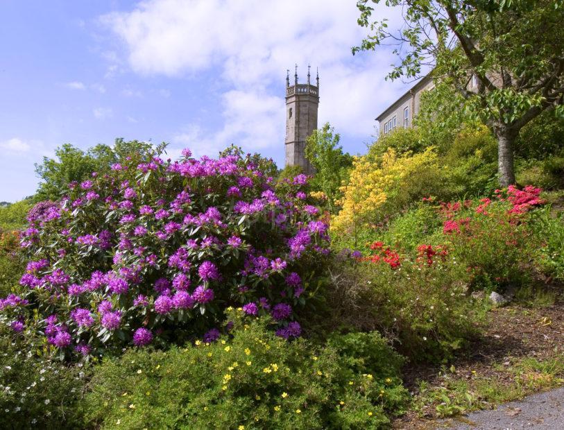 WY3Q0087 Ardmaddy Castle And Gardens