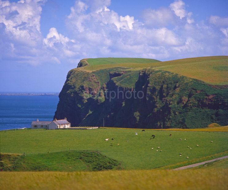 View Looking Eastwards Towards The High Cliffs Of Pennan Head Pennan Aberdeenshire