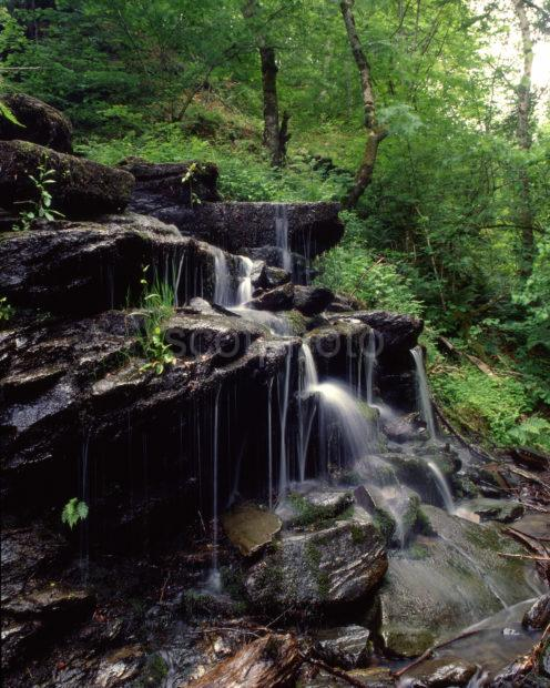 Waterfall Birks Of Aberfeldy Nr Aberfeldy Perthshire