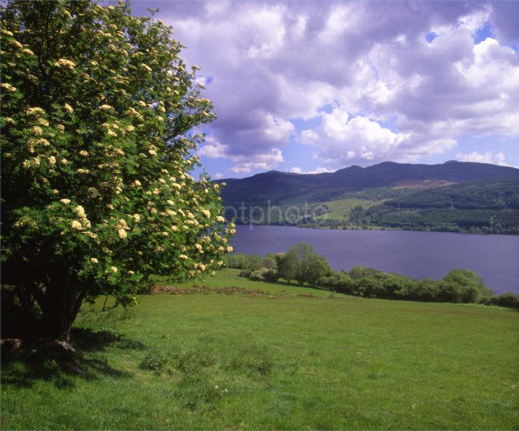 Loch Tummel Perthshire