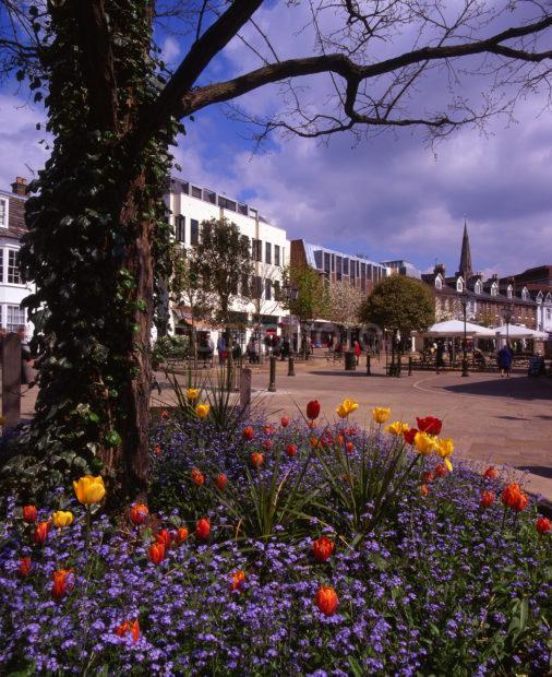 Summer View In Horsham