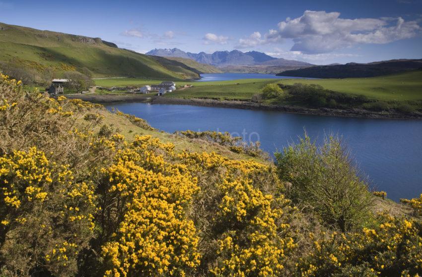 WY3Q9752 Spring Gesto Bay Loch Harport Skye 47MG