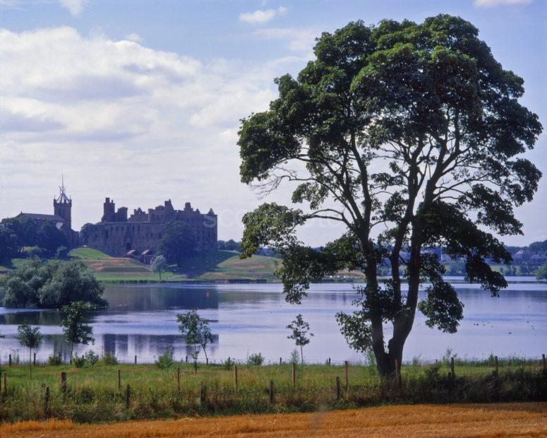 Summer View From Shore Of Linlithgow Loch Towards The Palace West Lothian