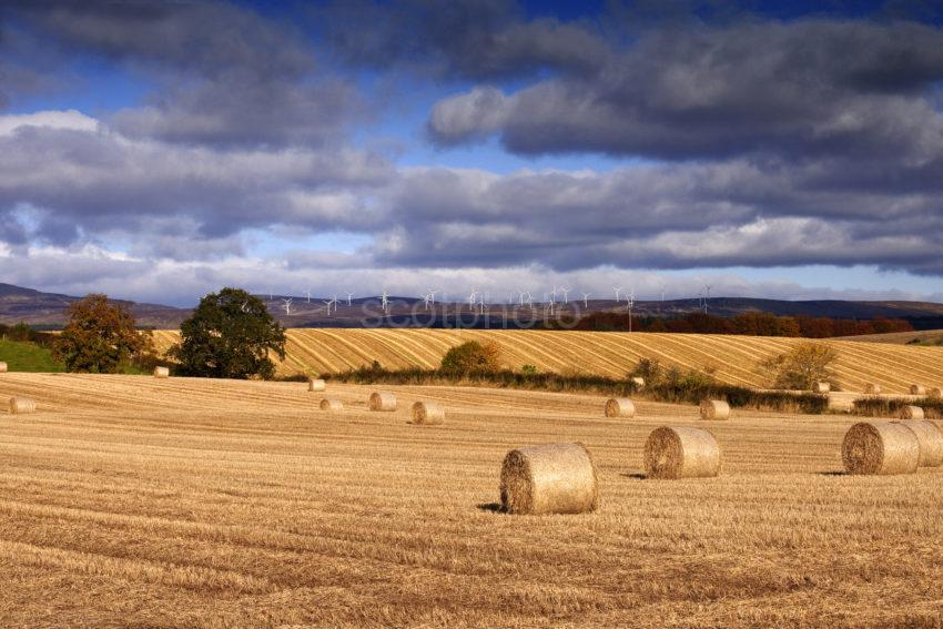 Windmills And Rolling Fields Near Thornhill Trossachs