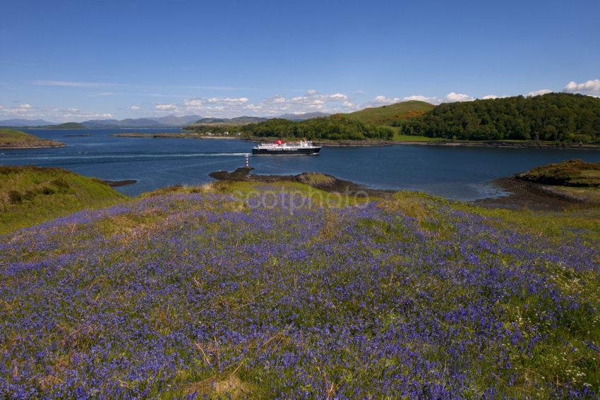 DSC 3852 ISLE OF MULL FERRY PASSES KERRERA WITH DUNOLLIE CASTLE IN VIEW ARGYLL