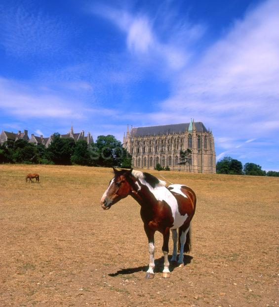 Horse At Lancing College Chapel